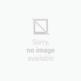 Plint - Woods Oak